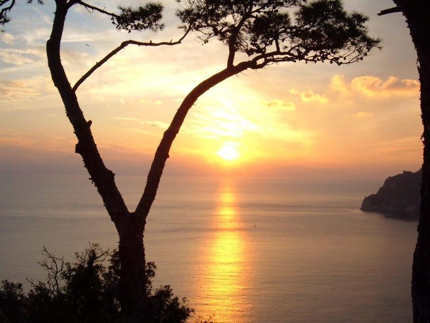 Tramonto a Capri foto di tramonto sul mare tramonti capresi immagini pino