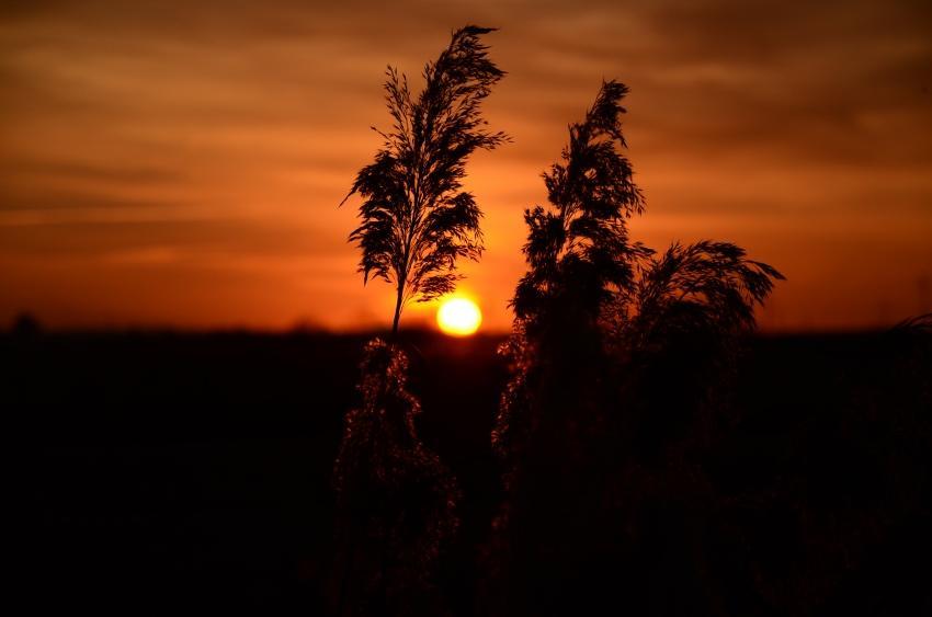 tramonto in secondo piano foto di tramonti campagna tramonto sfumato